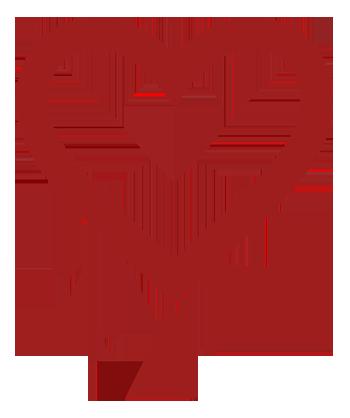 Heartbleed (2)