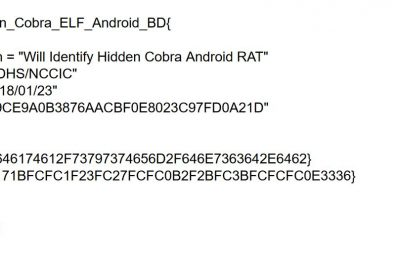 Hidden Cobra