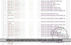 fuite de données d'entreprises françaises dans le black market