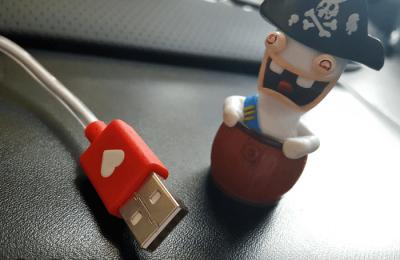 Piratage de données attentats